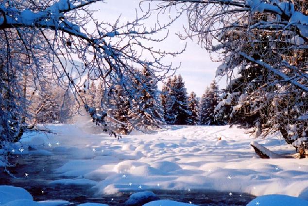 期盼已久的雪,终于下了